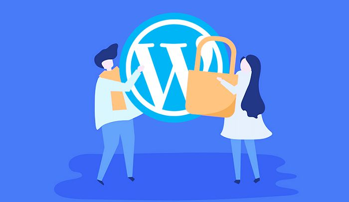The Top Ways to Secure Your WordPress Website from Cyber Attack